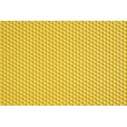 Tranu vaska šūnu plāksne 1gb
