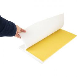 Silikona forma vaska māksīgo šunu ražošanai, 420x270mm